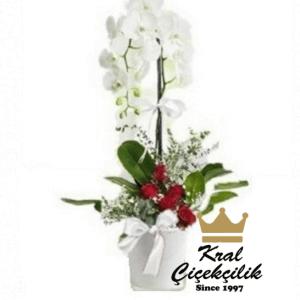Tek Dal İthal Orkide Çiçek Aranjmanlı Orkide Çiçeği tek dallı seramik saksısında alt gövdesi lilyum ve gül çiçekleri ile itina ile çiçek arajmanlı yapılmıştır